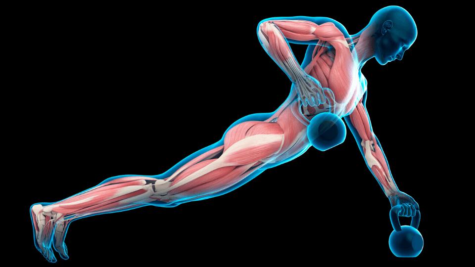 exercise pierre higginson sleep blog cortisol